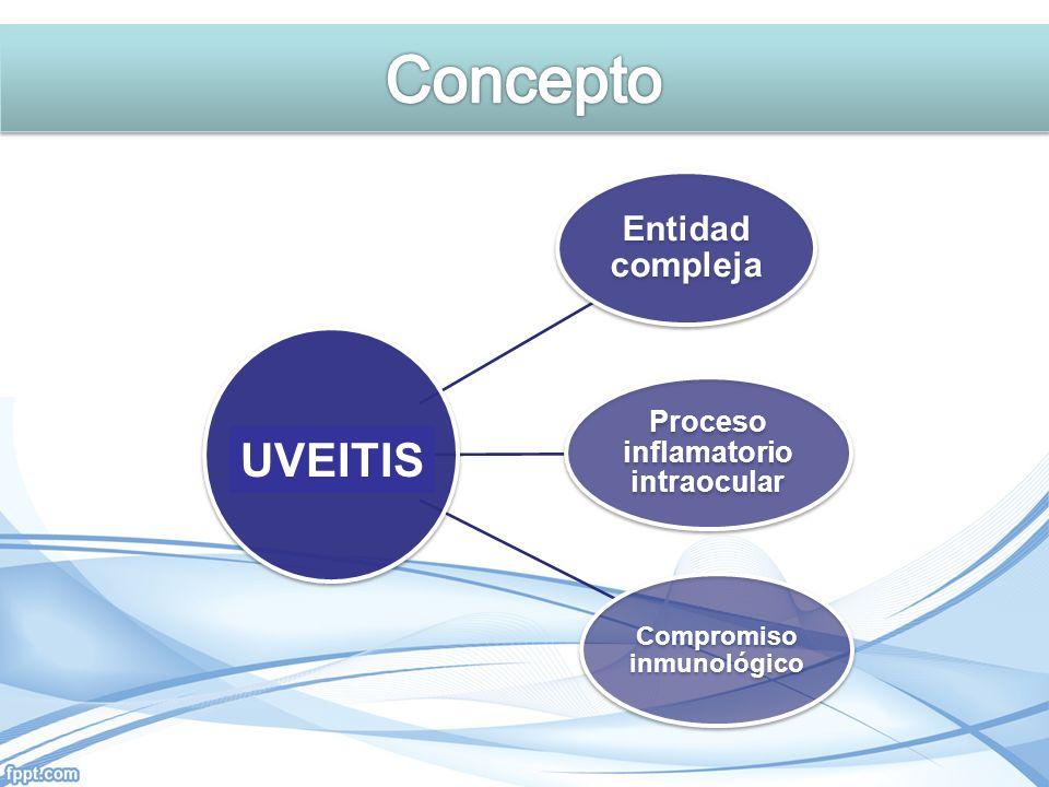 Entidad compleja Proceso inflamatorio intraocular Compromiso inmunológico UVEITIS