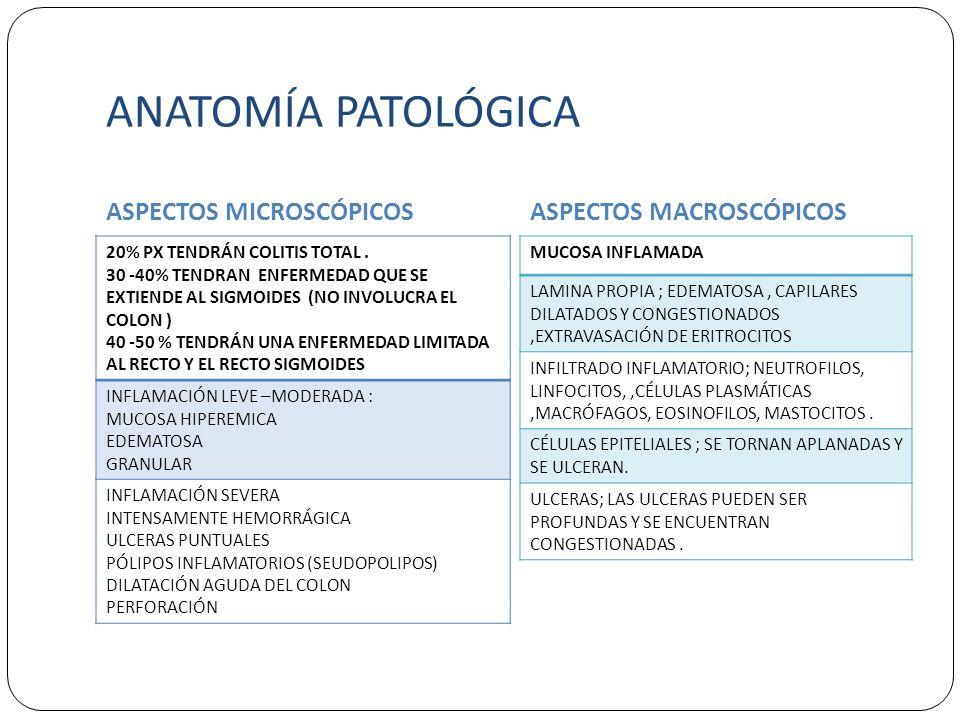 ANATOMÍA PATOLÓGICA ASPECTOS MICROSCÓPICOSASPECTOS MACROSCÓPICOS 20% PX TENDRÁN COLITIS TOTAL. 30 -40% TENDRAN ENFERMEDAD QUE SE EXTIENDE AL SIGMOIDES