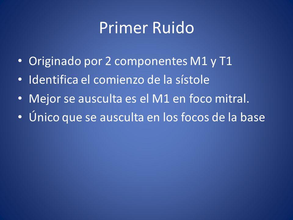 Primer Ruido Originado por 2 componentes M1 y T1 Identifica el comienzo de la sístole Mejor se ausculta es el M1 en foco mitral. Único que se ausculta