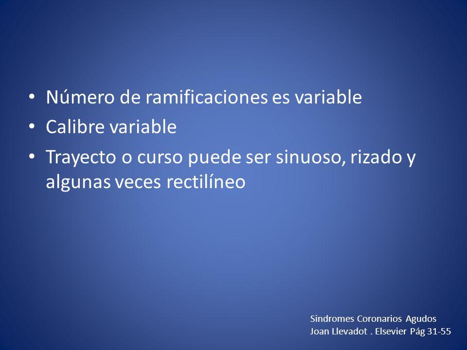Número de ramificaciones es variable Calibre variable Trayecto o curso puede ser sinuoso, rizado y algunas veces rectilíneo Sindromes Coronarios Agudo