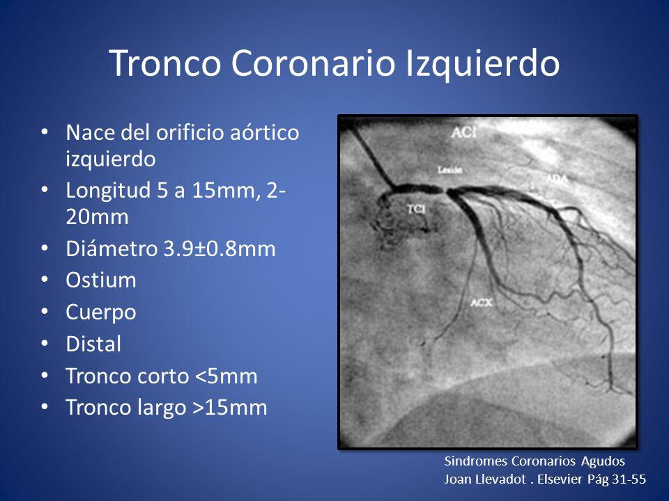 Tronco Coronario Izquierdo Nace del orificio aórtico izquierdo Longitud 5 a 15mm, 2- 20mm Diámetro 3.9±0.8mm Ostium Cuerpo Distal Tronco corto <5mm Tr