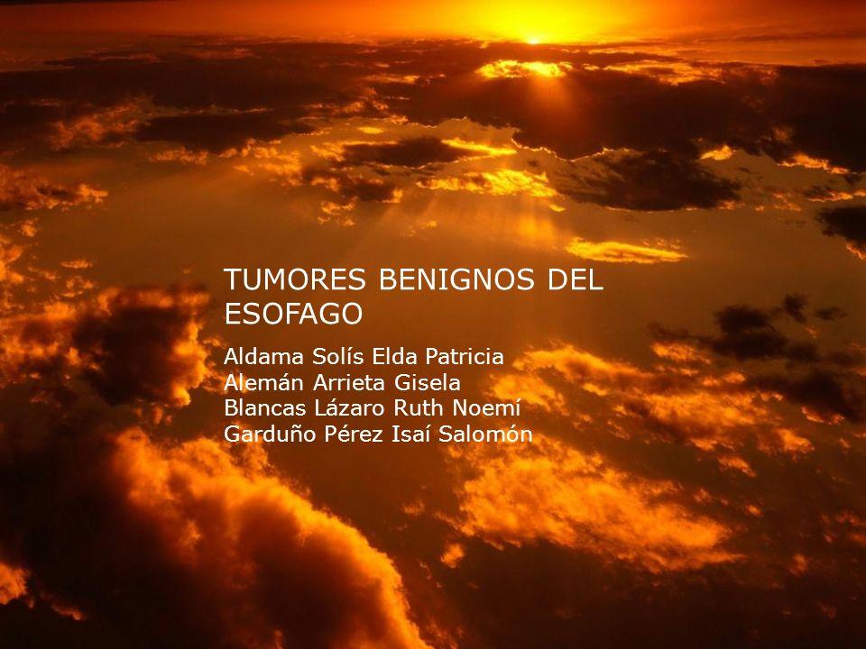 TUMORES BENIGNOS DEL ESOFAGO Aldama Solís Elda Patricia Alemán Arrieta Gisela Blancas Lázaro Ruth Noemí Garduño Pérez Isaí Salomón