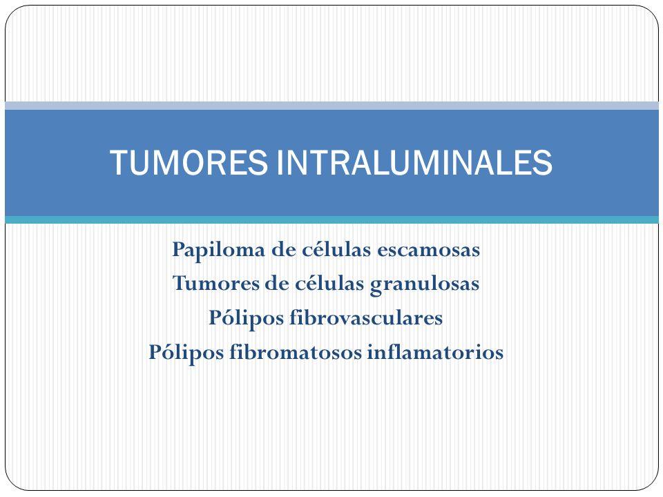 Papiloma de células escamosas Tumores de células granulosas Pólipos fibrovasculares Pólipos fibromatosos inflamatorios TUMORES INTRALUMINALES