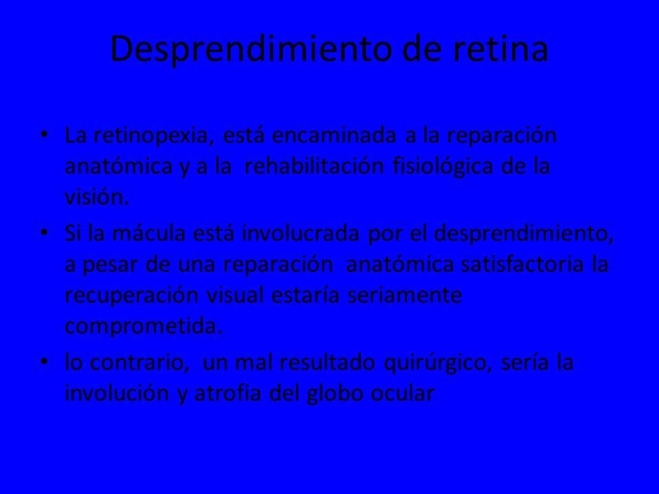 Desprendimiento de retina La retinopexia, está encaminada a la reparación anatómica y a la rehabilitación fisiológica de la visión. Si la mácula está
