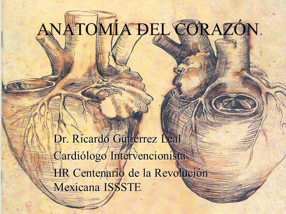 ANATOMÍA DEL CORAZÓN. Dr. Ricardo Gutiérrez Leal Cardiólogo Intervencionista HR Centenario de la Revolución Mexicana ISSSTE