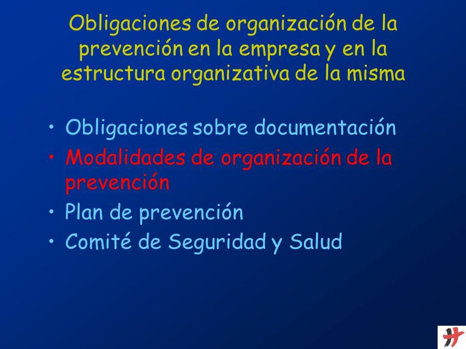 Obligaciones de organización de la prevención en la empresa y en la estructura organizativa de la misma Obligaciones sobre documentación Modalidades d