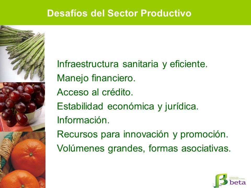 Desafíos del Sector Productivo Infraestructura sanitaria y eficiente. Manejo financiero. Acceso al crédito. Estabilidad económica y jurídica. Informac