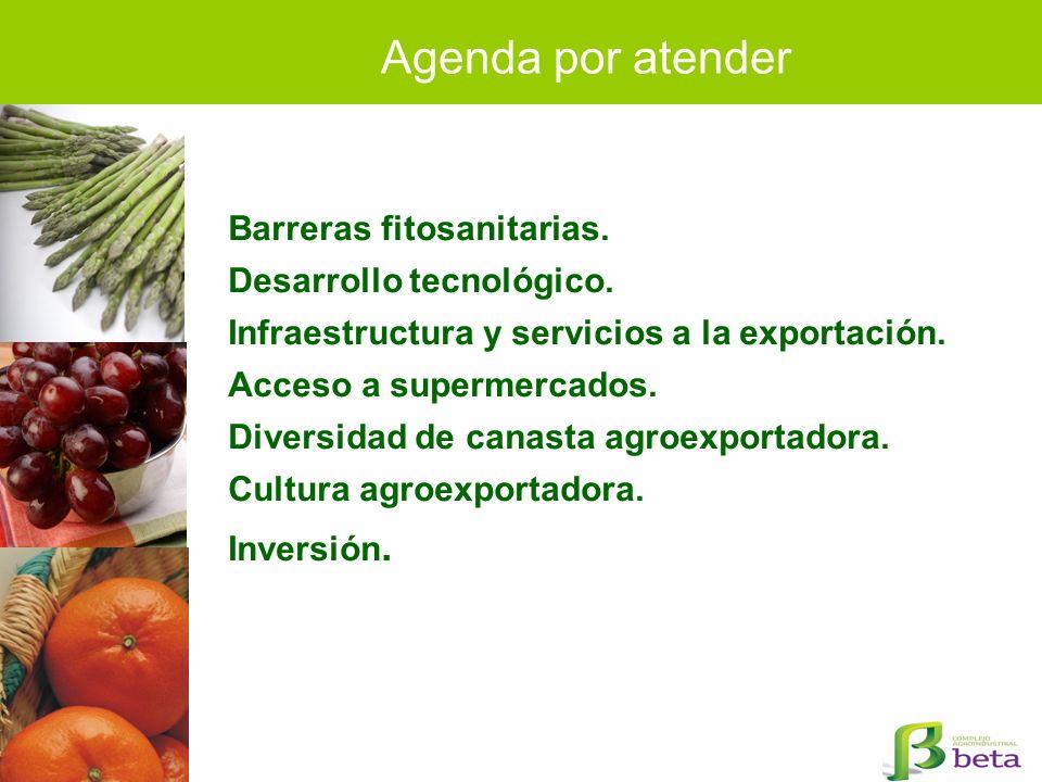 Agenda por atender Barreras fitosanitarias. Desarrollo tecnológico. Infraestructura y servicios a la exportación. Acceso a supermercados. Diversidad d