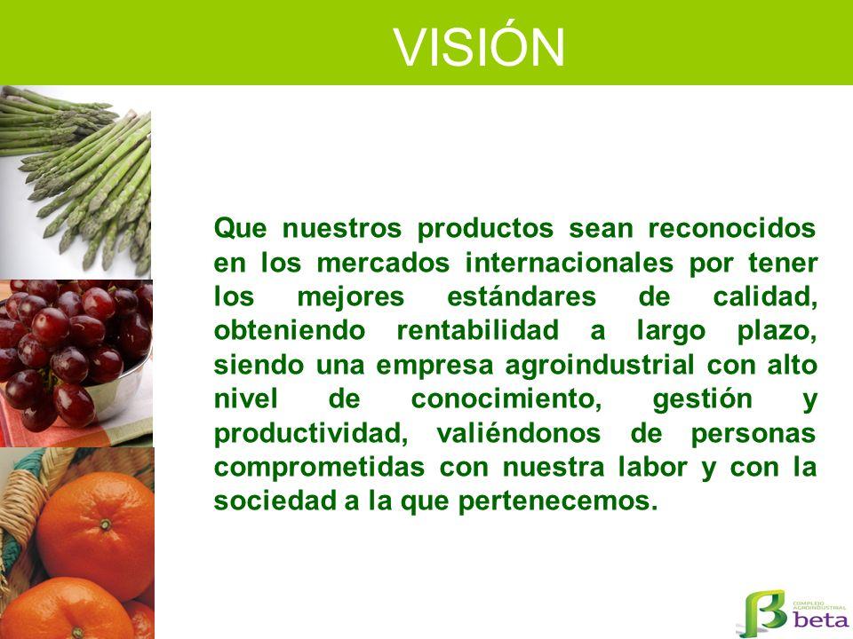 VISIÓN Que nuestros productos sean reconocidos en los mercados internacionales por tener los mejores estándares de calidad, obteniendo rentabilidad a