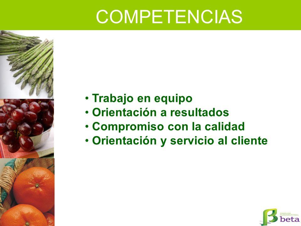 COMPETENCIAS Trabajo en equipo Orientación a resultados Compromiso con la calidad Orientación y servicio al cliente
