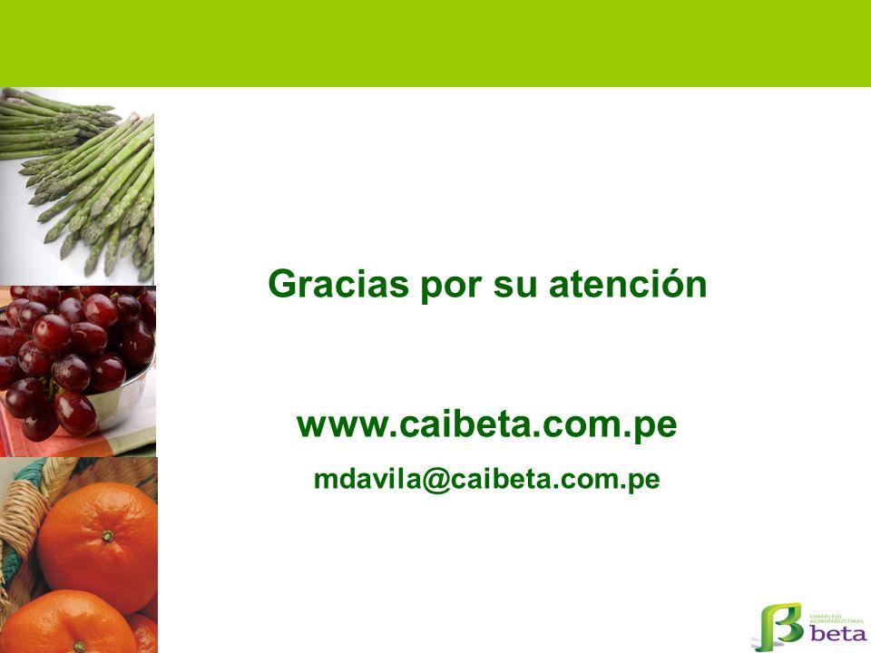 Gracias por su atención www.caibeta.com.pe mdavila@caibeta.com.pe