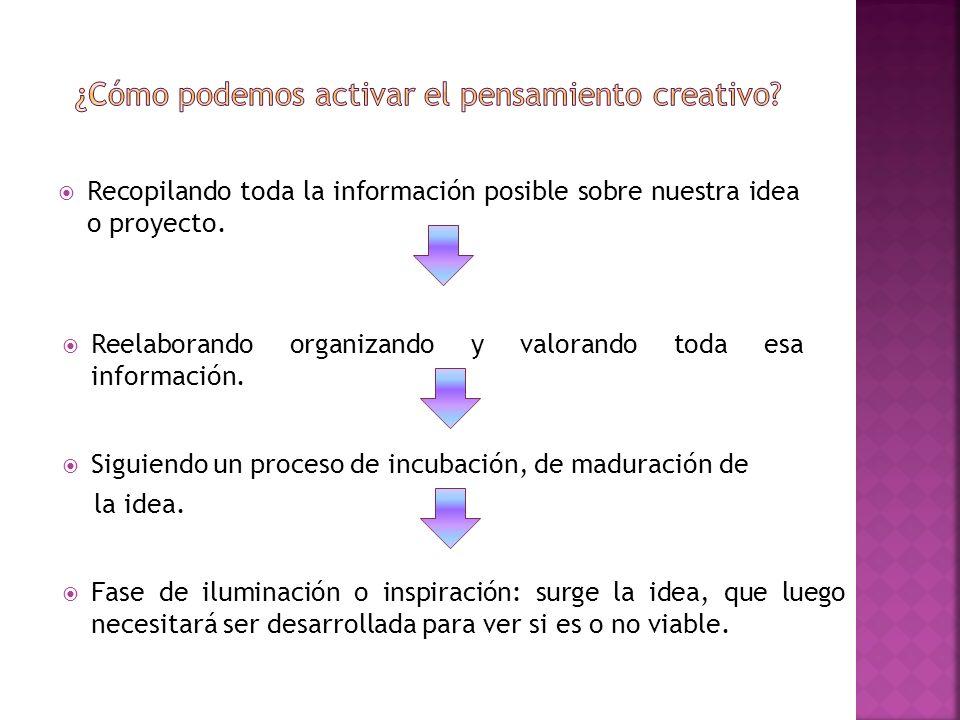Recopilando toda la información posible sobre nuestra idea o proyecto. Reelaborando organizando y valorando toda esa información. Siguiendo un proceso