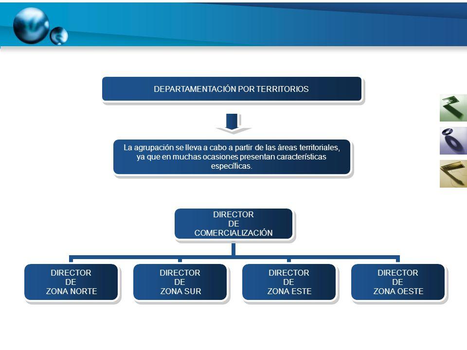 DIRECTOR DE COMERCIALIZACIÓN DIRECTOR DE ZONA NORTE DIRECTOR DE ZONA SUR DIRECTOR DE ZONA ESTE DIRECTOR DE ZONA OESTE DEPARTAMENTACIÓN POR TERRITORIOS