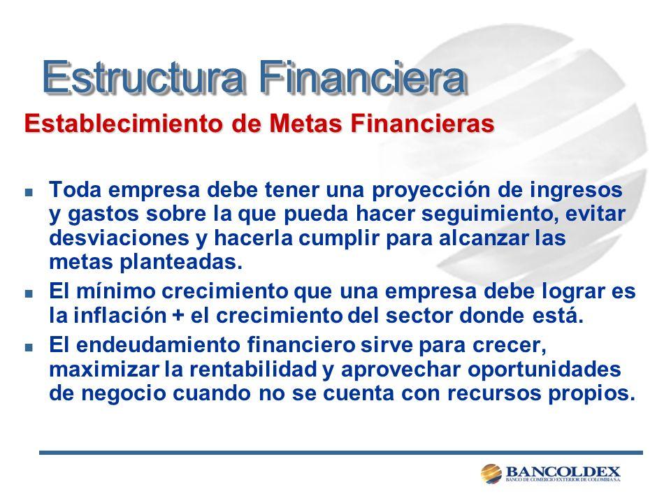 Estructura Financiera Establecimiento de Metas Financieras n Toda empresa debe tener una proyección de ingresos y gastos sobre la que pueda hacer segu