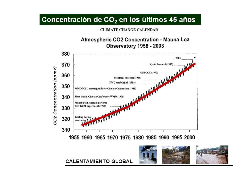 CALENTAMIENTO GLOBAL Concentración de CO 2 en los últimos 45 años