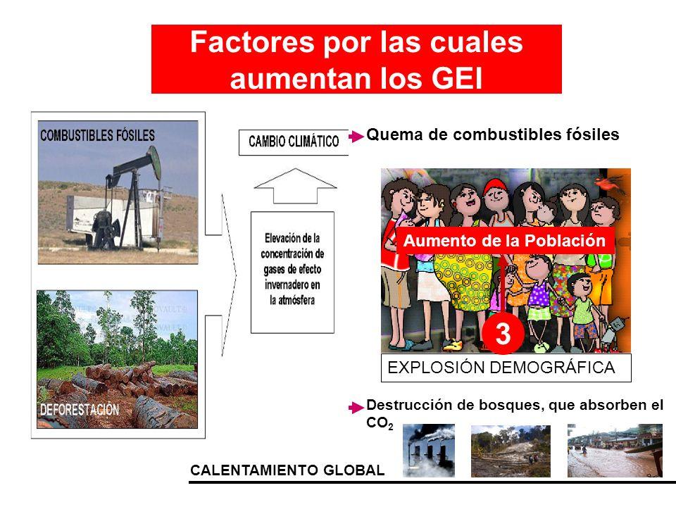 CALENTAMIENTO GLOBAL EXPLOSIÓN DEMOGRÁFICA Factores por las cuales aumentan los GEI Quema de combustibles fósiles Destrucción de bosques, que absorben