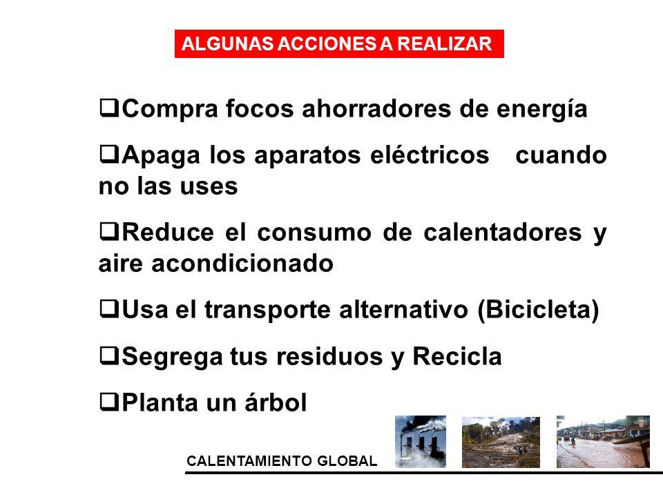 CALENTAMIENTO GLOBAL ALGUNAS ACCIONES A REALIZAR Compra focos ahorradores de energía Apaga los aparatos eléctricos cuando no las uses Reduce el consum