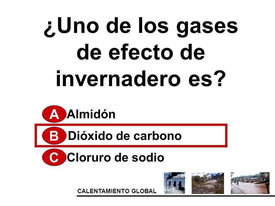 CALENTAMIENTO GLOBAL ¿Uno de los gases de efecto de invernadero es? A Cloruro de sodio Dióxido de carbono Almidón B C