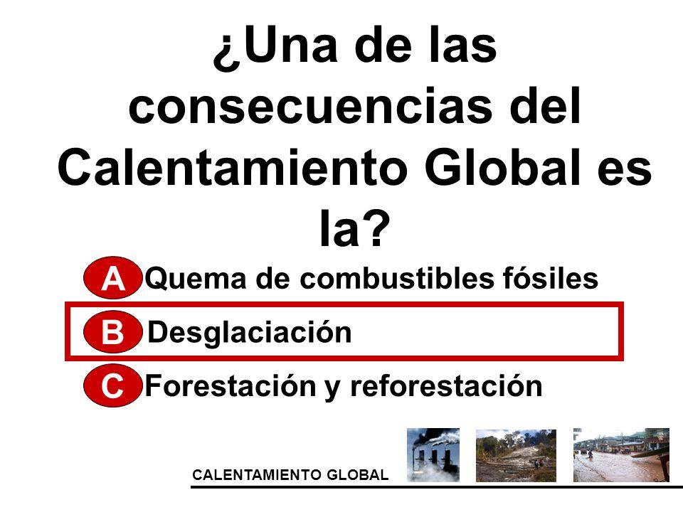 CALENTAMIENTO GLOBAL ¿Una de las consecuencias del Calentamiento Global es la? A Forestación y reforestación Desglaciación Quema de combustibles fósil