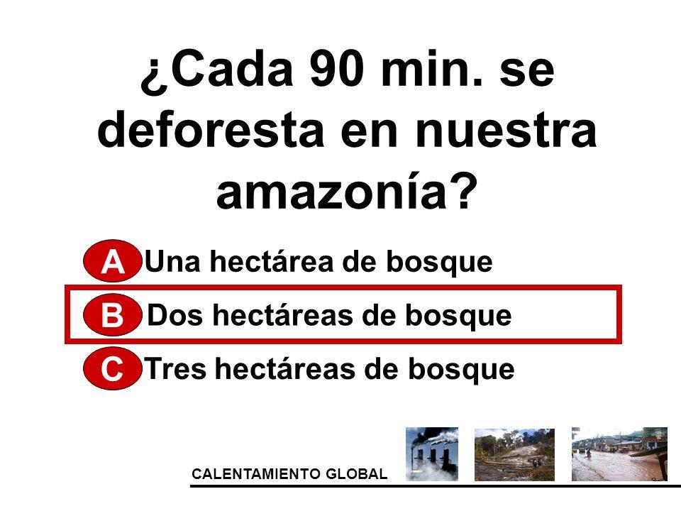 CALENTAMIENTO GLOBAL ¿Cada 90 min. se deforesta en nuestra amazonía? A Tres hectáreas de bosque Dos hectáreas de bosque Una hectárea de bosque B C