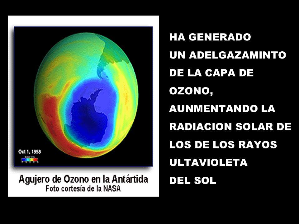 HA GENERADO UN ADELGAZAMINTO DE LA CAPA DE OZONO, AUNMENTANDO LA RADIACION SOLAR DE LOS DE LOS RAYOS ULTAVIOLETA DEL SOL
