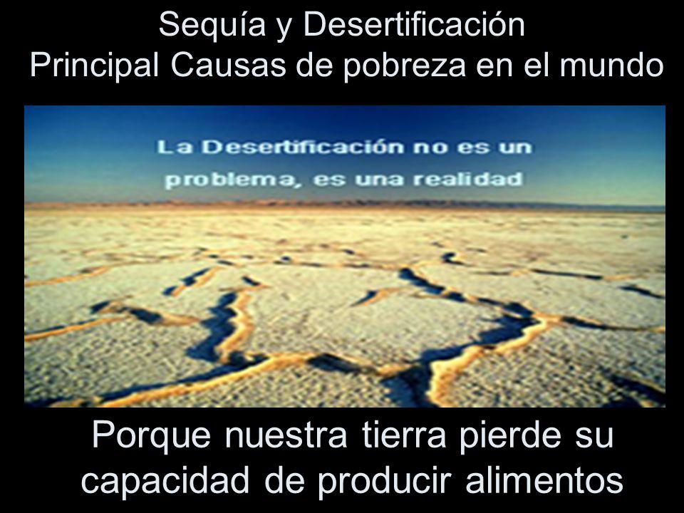 Porque nuestra tierra pierde su capacidad de producir alimentos Sequía y Desertificación Principal Causas de pobreza en el mundo