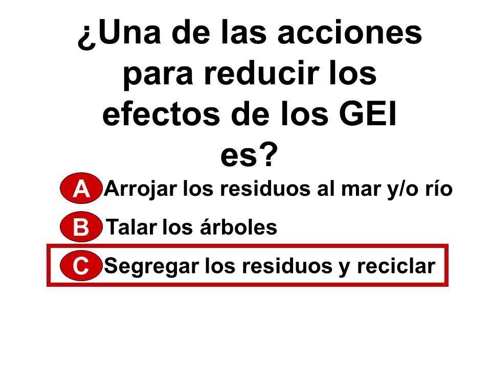 PRINCIPALES CONTAMINANTES DEL AIRE 5.Dióxido de Carbono (CO 2 ) 4.
