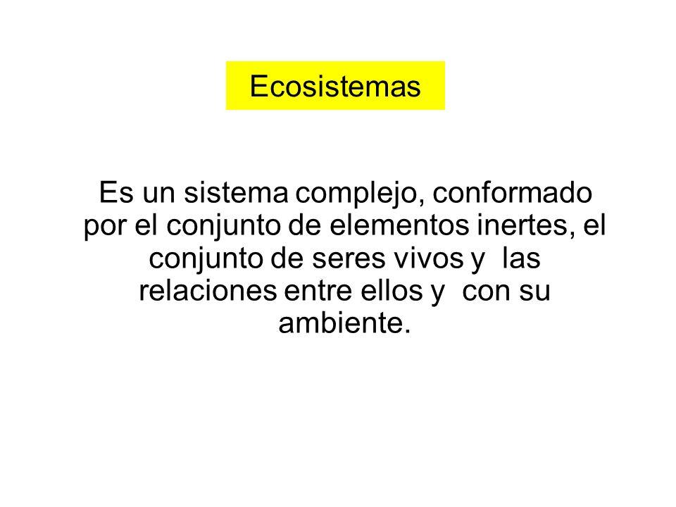 Ecosistemas Es un sistema complejo, conformado por el conjunto de elementos inertes, el conjunto de seres vivos y las relaciones entre ellos y con su