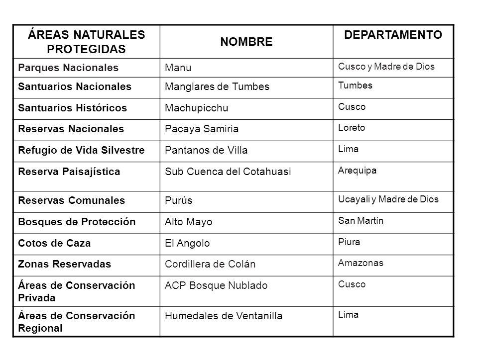 ÁREAS NATURALES PROTEGIDAS NOMBRE DEPARTAMENTO Parques NacionalesManu Cusco y Madre de Dios Santuarios NacionalesManglares de Tumbes Tumbes Santuarios