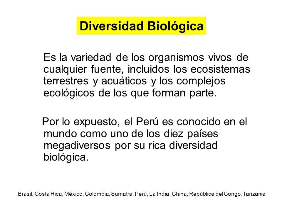 Es la variedad de los organismos vivos de cualquier fuente, incluidos los ecosistemas terrestres y acuáticos y los complejos ecológicos de los que for