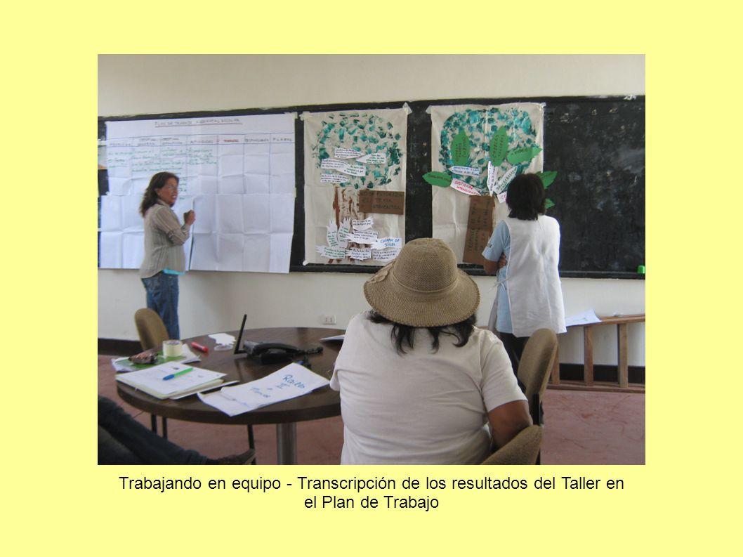 Trabajando en equipo - Transcripción de los resultados del Taller en el Plan de Trabajo