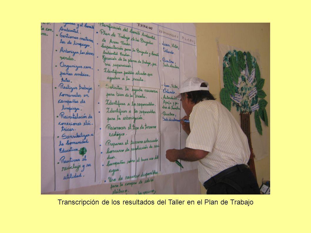 Transcripción de los resultados del Taller en el Plan de Trabajo