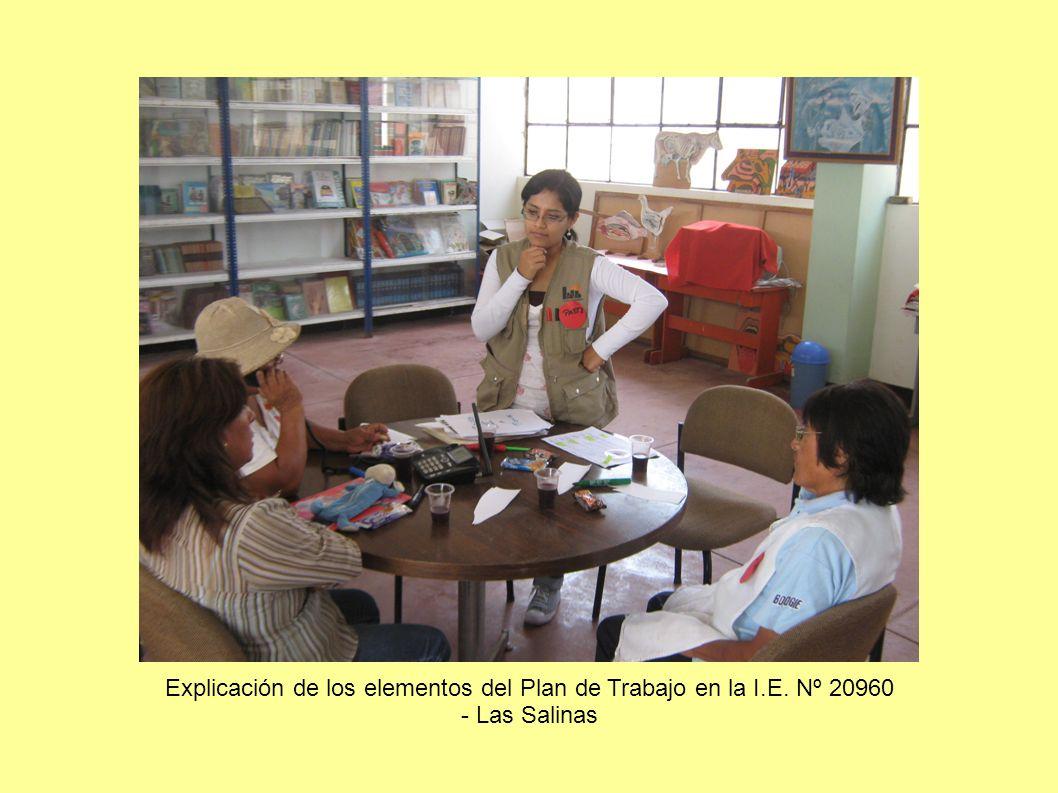 Explicación de los elementos del Plan de Trabajo en la I.E. Nº 20960 - Las Salinas