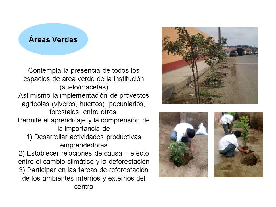 Contempla la presencia de todos los espacios de área verde de la institución (suelo/macetas) Así mismo la implementación de proyectos agrícolas (viver