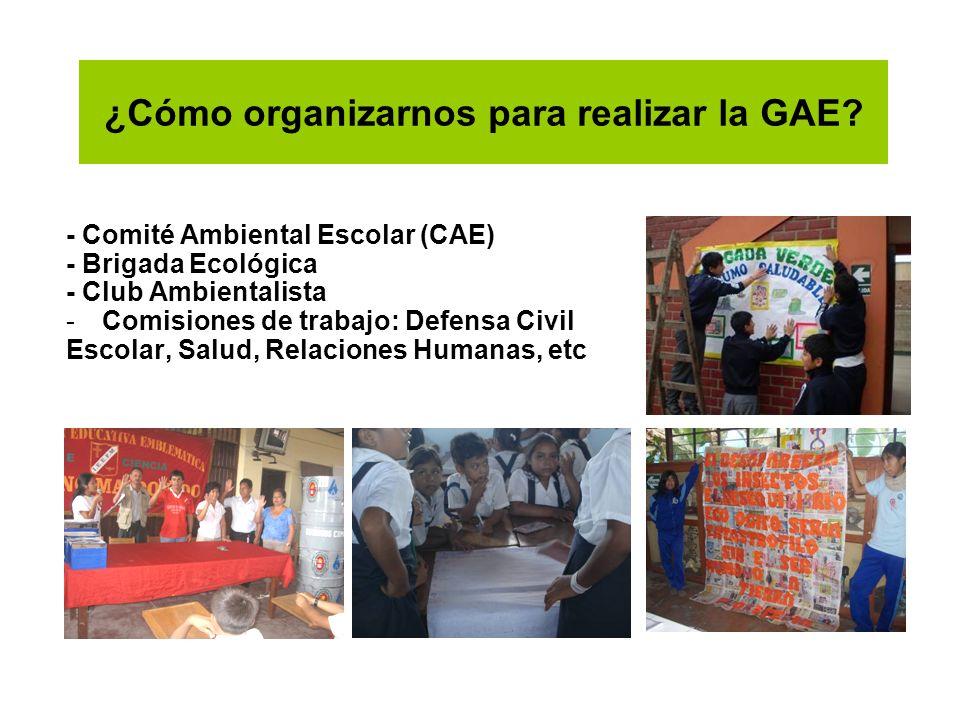 ¿Cómo organizarnos para realizar la GAE? - Comité Ambiental Escolar (CAE) - Brigada Ecológica - Club Ambientalista -Comisiones de trabajo: Defensa Civ
