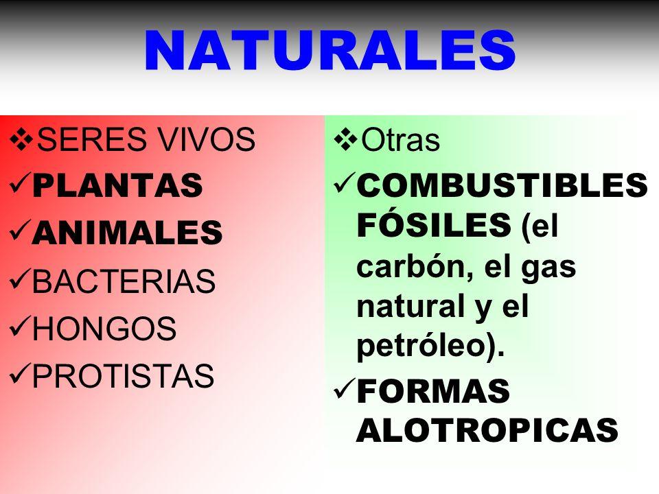 NATURALES SERES VIVOS PLANTAS ANIMALES BACTERIAS HONGOS PROTISTAS Otras COMBUSTIBLES FÓSILES (el carbón, el gas natural y el petróleo).