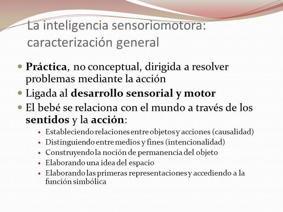 La inteligencia sensoriomotora: caracterización general Práctica, no conceptual, dirigida a resolver problemas mediante la acción Ligada al desarrollo