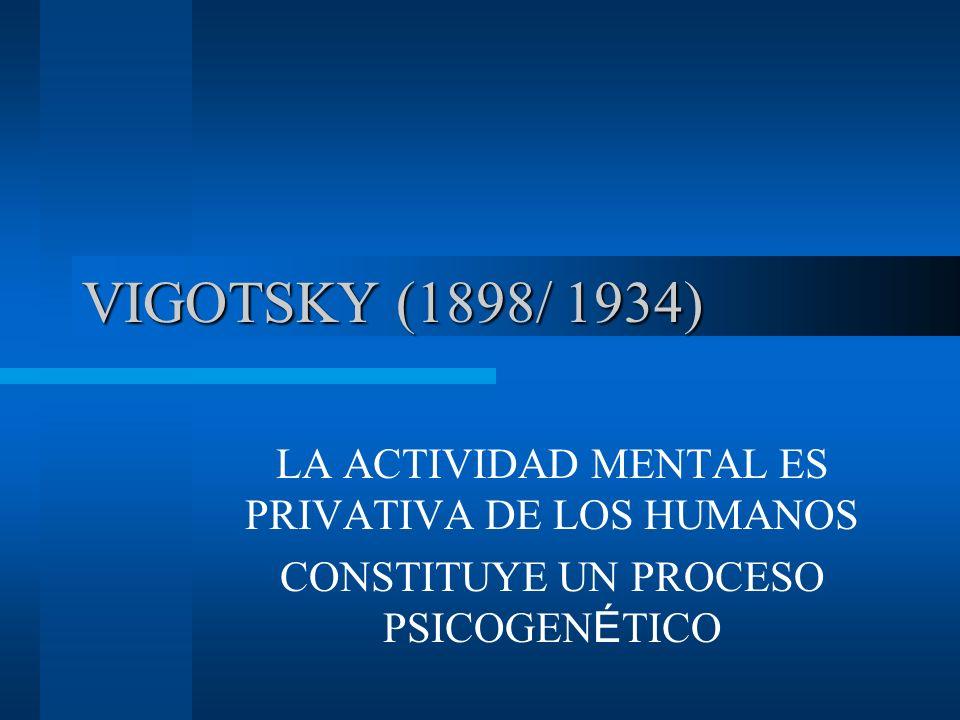 VIGOTSKY (1898/ 1934) LA ACTIVIDAD MENTAL ES PRIVATIVA DE LOS HUMANOS CONSTITUYE UN PROCESO PSICOGEN É TICO