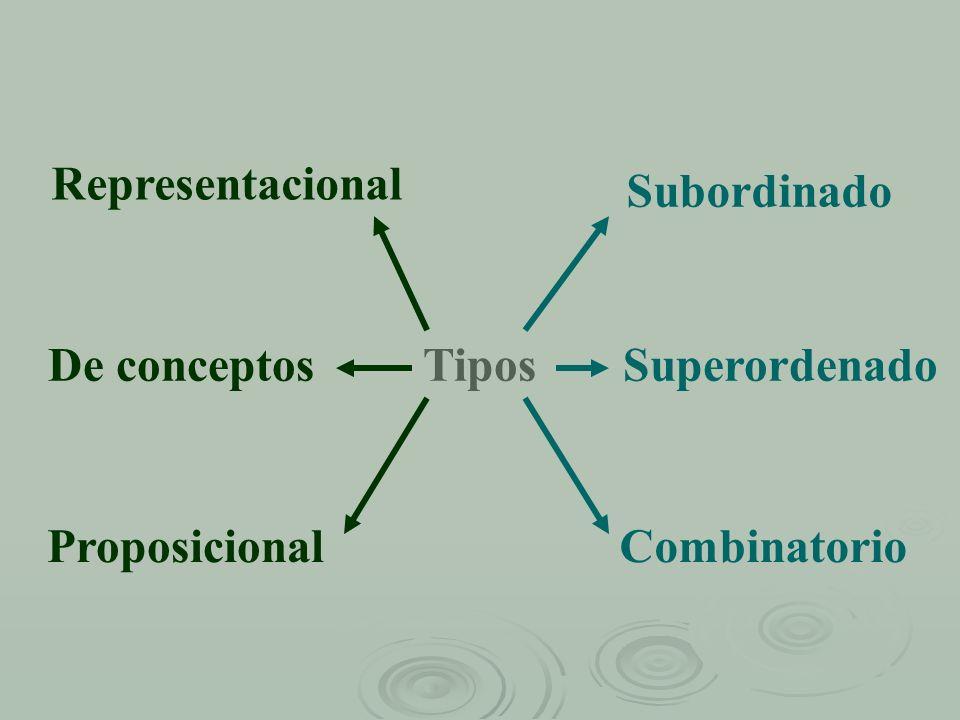 Tipos Representacional De conceptos Proposicional Subordinado Superordenado Combinatorio
