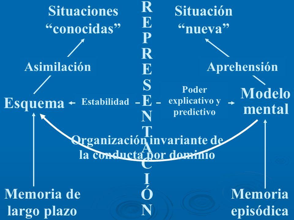 Estabilidad Situaciones conocidas Situación nueva R E P R E S E N T A C I Ó N Esquema Modelo mental Memoria de largo plazo Memoria episódica Poder exp