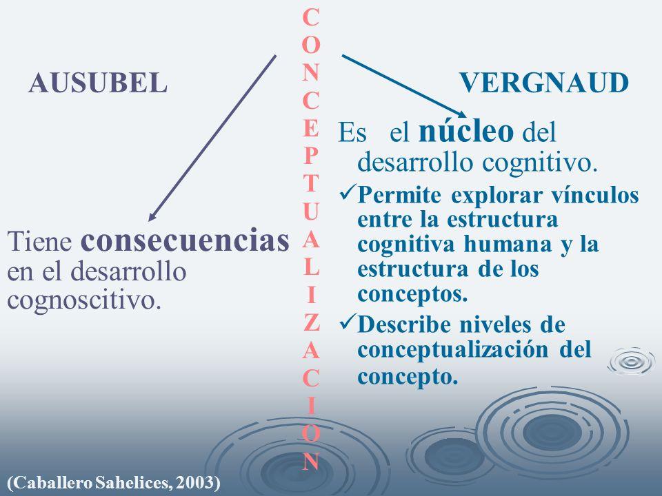 Tiene consecuencias en el desarrollo cognoscitivo. Es el núcleo del desarrollo cognitivo. Permite explorar vínculos entre la estructura cognitiva huma