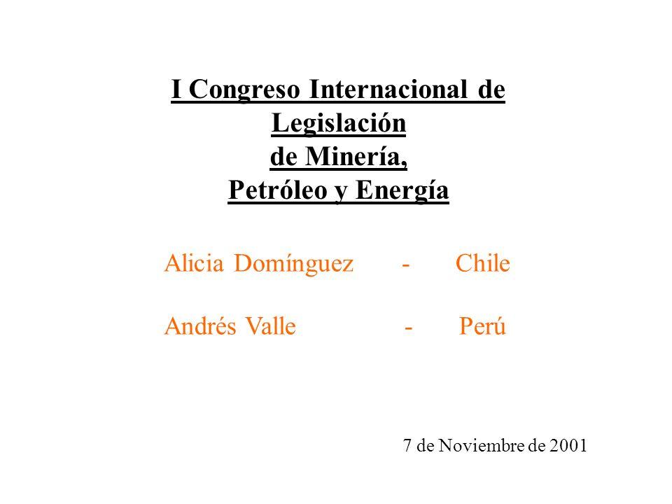 I Congreso Internacional de Legislación de Minería, Petróleo y Energía 7 de Noviembre de 2001 Alicia Domínguez - Chile Andrés Valle - Perú
