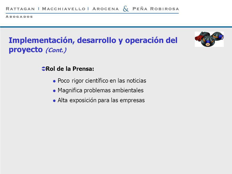 P 11 © Rattagan Macchiavello Arocena & Peña Robirosa, 2005 Rol de la Prensa: Poco rigor científico en las noticias Magnifica problemas ambientales Alt