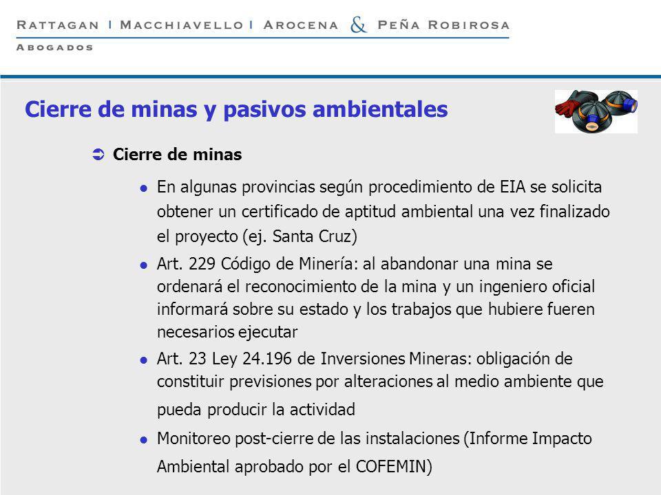 P 12 © Rattagan Macchiavello Arocena & Peña Robirosa, 2005 Cierre de minas En algunas provincias según procedimiento de EIA se solicita obtener un cer