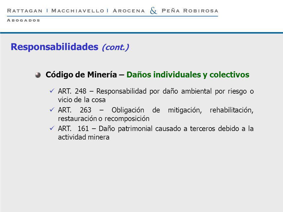 P 14 © Rattagan Macchiavello Arocena & Peña Robirosa, 2005 Código de Minería – Daños individuales y colectivos ART. 248 – Responsabilidad por daño amb