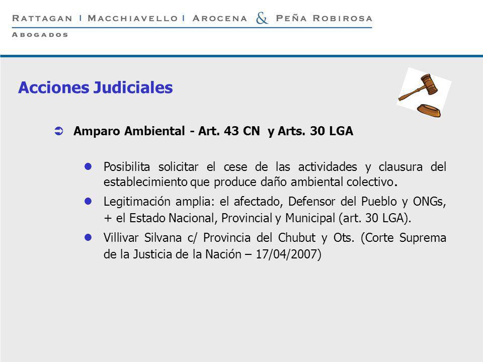 P 15 © Rattagan Macchiavello Arocena & Peña Robirosa, 2005 Amparo Ambiental - Art. 43 CN y Arts. 30 LGA Posibilita solicitar el cese de las actividade