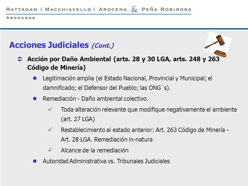 P 16 © Rattagan Macchiavello Arocena & Peña Robirosa, 2005 Acción por Daño Ambiental (arts. 28 y 30 LGA, arts. 248 y 263 Código de Minería) Legitimaci