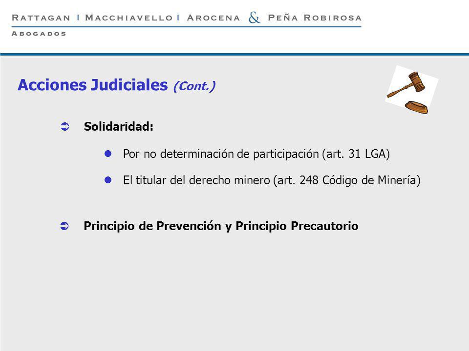P 17 © Rattagan Macchiavello Arocena & Peña Robirosa, 2005 Solidaridad: Por no determinación de participación (art. 31 LGA) El titular del derecho min