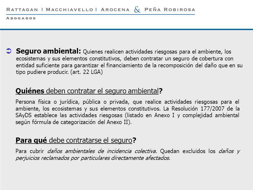 P 19 © Rattagan Macchiavello Arocena & Peña Robirosa, 2005 Seguro ambiental: Quienes realicen actividades riesgosas para el ambiente, los ecosistemas