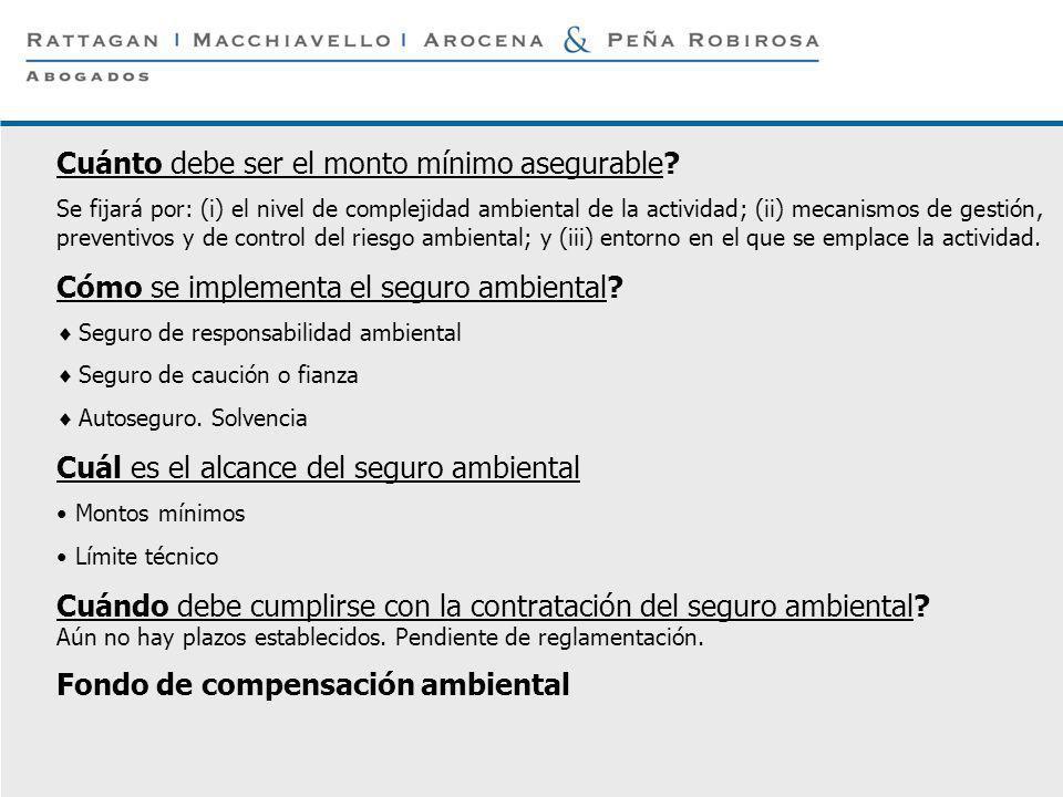 P 20 © Rattagan Macchiavello Arocena & Peña Robirosa, 2005 Cuánto debe ser el monto mínimo asegurable? Se fijará por: (i) el nivel de complejidad ambi
